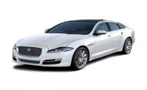 Jaguar Series